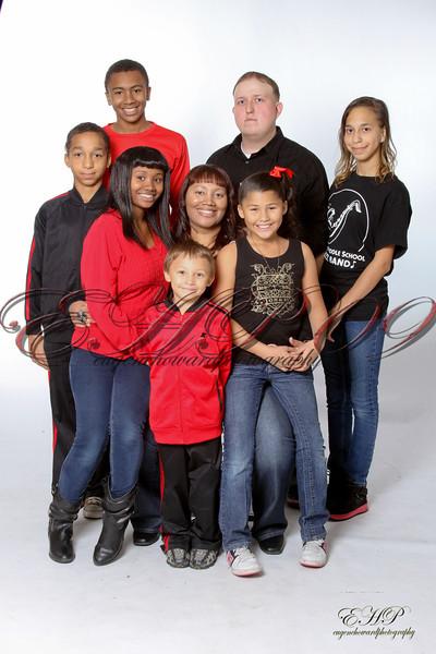 family 133-124