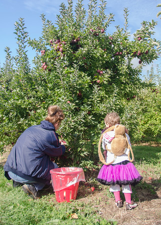 Apple Picking and Hiking 2014 October 11-24