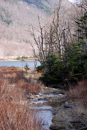 Walking to Profile Lake, in the White Mountains of New Hampshire