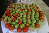 I just came in from gathering some tomatoes. I have them on the back porch white table. The stink bugs are just ruining them. I picked a lot of green ones hopefully before the stink bugs bit them. They will ripen when picked green and still be very good. I have attached a photo of the tomatoes on the table. If these green ones ripen okay I plan on picking all the big ones while they are green. I had to crawl around on my belly and knees to pick them as the vines are so large and thick.<br /> <br /> Love you, Clyde