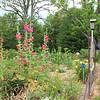 Moms flower and vegetable garden.