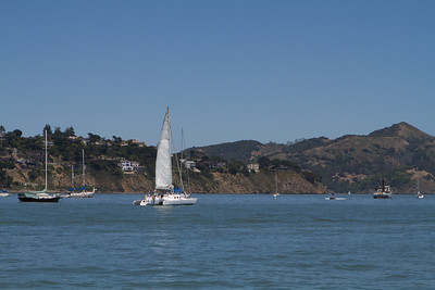 The wind was light in Richardson's Bay, but the sailing looked like fun.