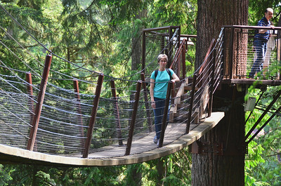 Tree Adventure- Capilano Suspension bridge park.