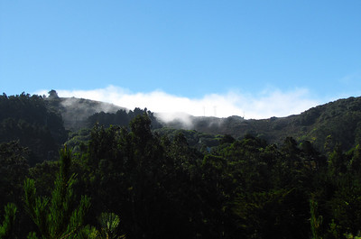 06-Fog on Wolfback Ridge, Sausalito