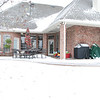 The winter backyard