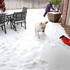 Dakota loved playing with the kids in the snow