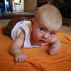 <b>23 Dec 2010</b> Tummy time - meh (a week later he figured out how to escape tummy time, so there won't be many more photos from this angle)