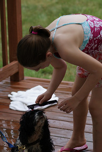 Combing out Daisy!
