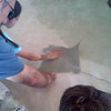 IMG_20120814_111726.jpg