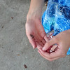 IMG_20120811_182836.jpg
