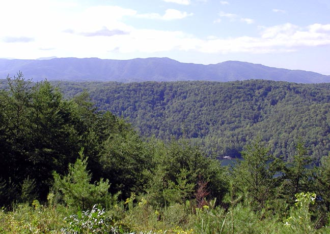 View toward Chilhowee Lake barely visible in the bottom right corner.