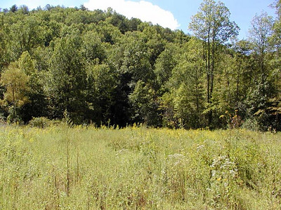 Wildlife Meadow at Tallassee