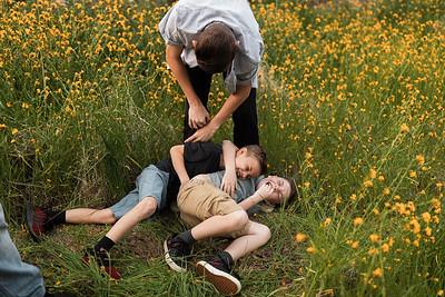 Alexandria Vail Photography Three Rivers Wildflowers Fowler 028
