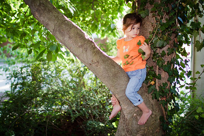 She's taken to wanting to climb up into our magnolia tree. She can do so on her own, yet, so mommy helps her up. You can see my wife's fingers where she's holding onto her leg.
