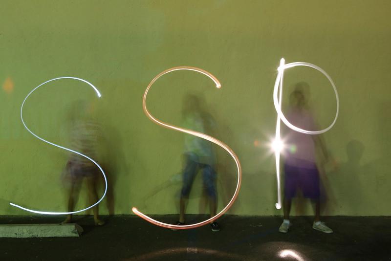 SSP 2013
