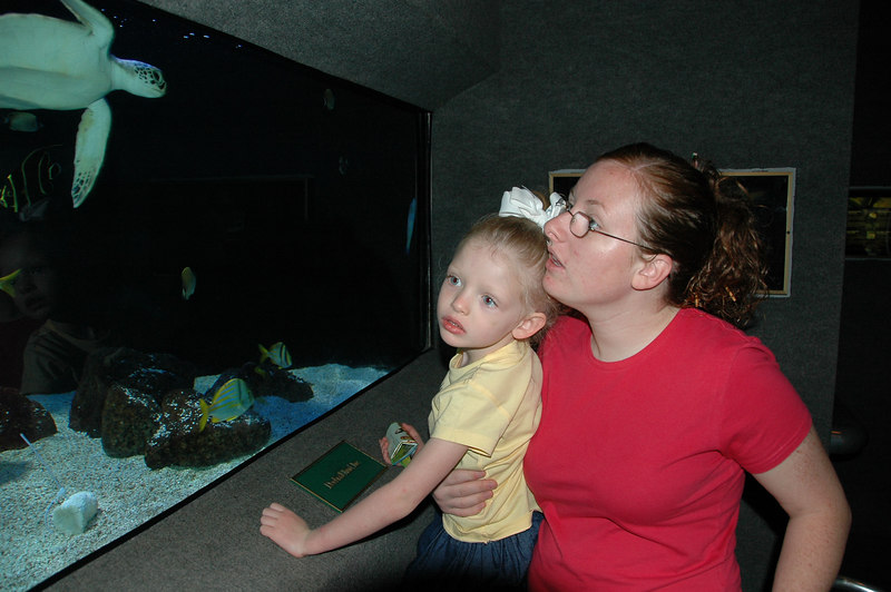 During Spring Break, Annette & Katie made a visit and we got to visit the Houston Zoo.