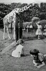 Whipsnade, 1958