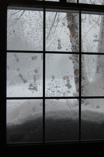 Blizzard hits -- snow piles up against our windows.