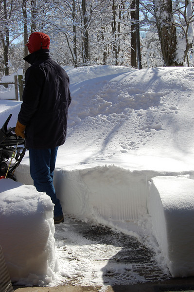 First few feet of clearing from the garage.