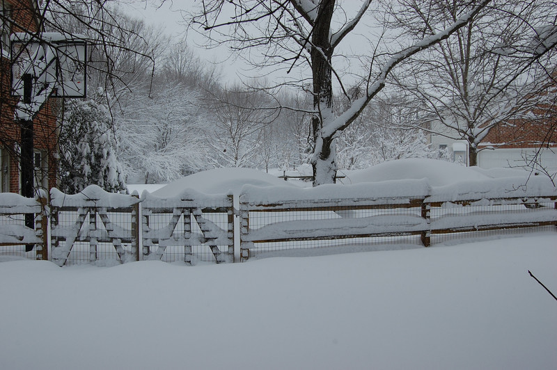 Darius' fence sure looks nice in snow -- but the bottom layer of it disappeared.