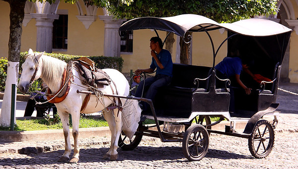 Waiting for a fare on the Square in Antigua.