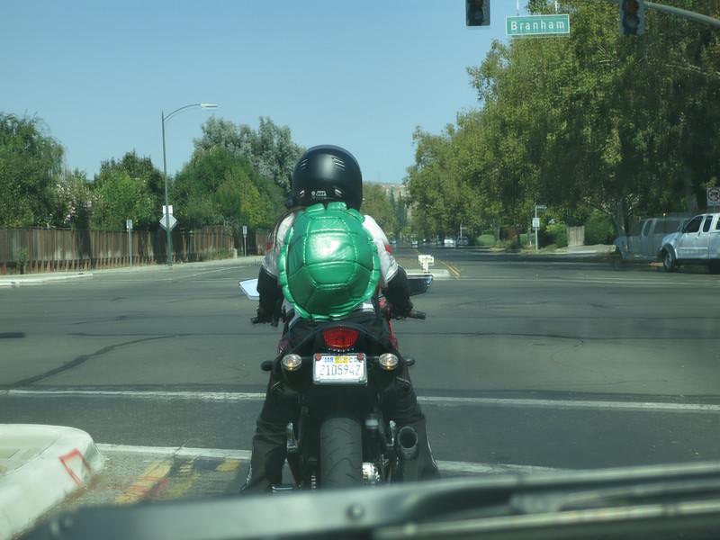 Teenage Mutant Ninja Rider