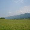 Another view from Cades Cove