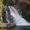 Hike #1 destination - Abrams Falls - 2 miles each way, but not too bad of a hike overall.