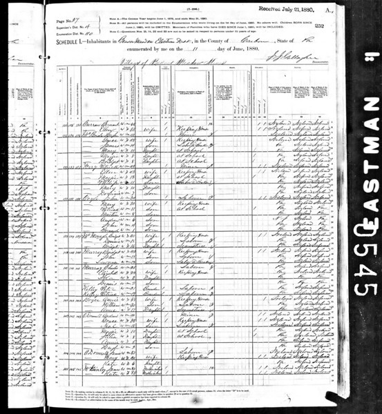 1880 U.S. Census - Patrick Ferry Family
