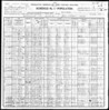 1900 U.S. Census - Mary O'Hara & Family