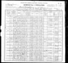 1900 U.S. Census  - Peter Gallagher & Family