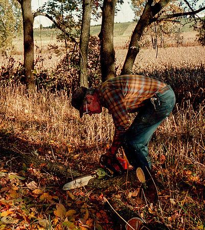 GL cutting wood