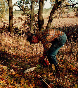 GL cutting wood