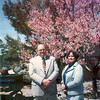 dad and mom in front of peach tree