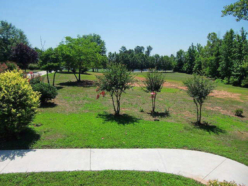 This view is from the front porch looking towards the street, at about 3 acres of land. This will need one giant mower.
