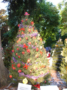 "Here is a tree decorated by one of the ""Red Hat Society"" groups."
