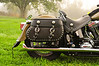 glensbike-7024