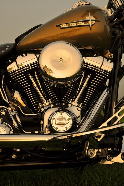 glensbike-6948
