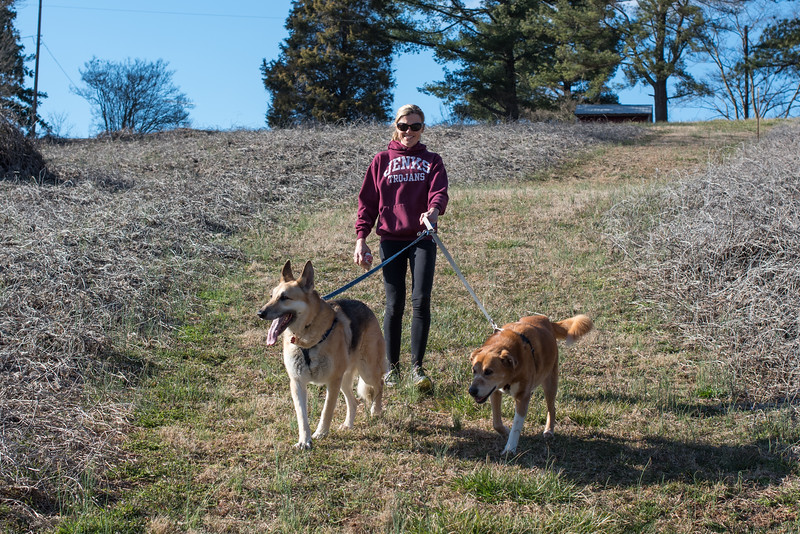 Hiking in Greensboro, NC from our home to Lake Brandt