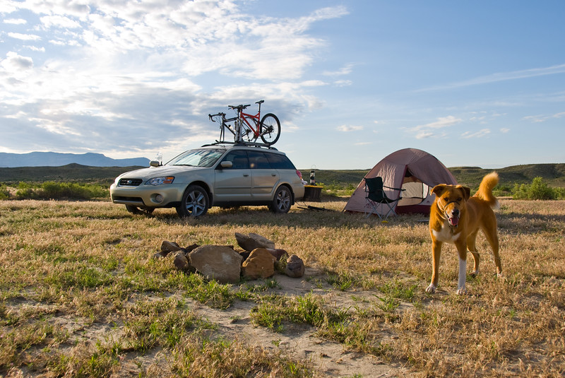 Camping in Fruita, CO on our way to Lake Tahoe, CA.