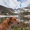 Hiking at Rollins Pass again.  A return to one of our favorite spots. 11,300 ft.