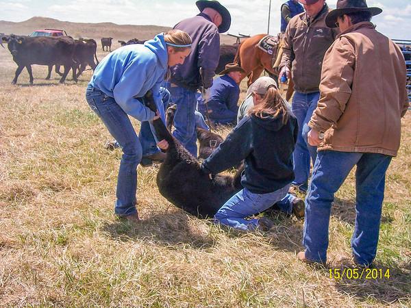 Gordon, NE Ranchers May 2014