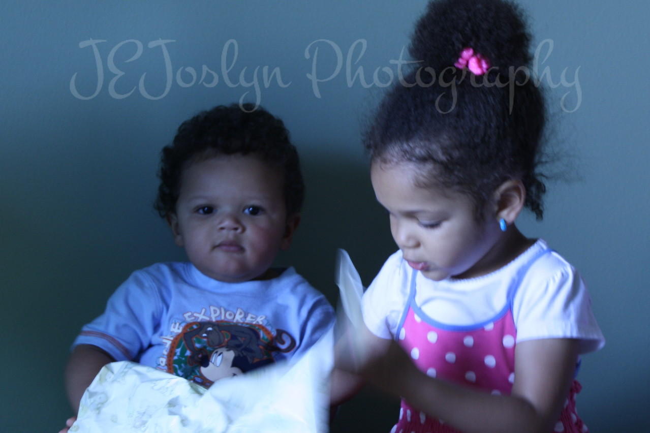GS-1's 1st birthday, with his sister, GD-4, held on May 9, 2010.