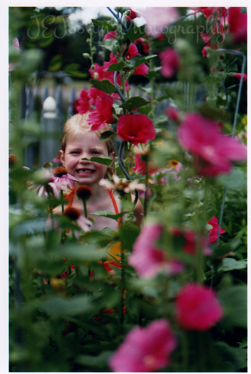 GD G-6, pretending to be garden flower in Grandma Hat's garden, August, 2006.
