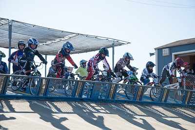 Grant at the starting gate in practice