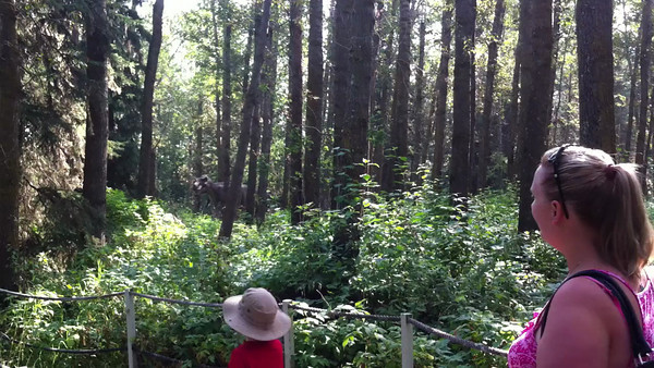Hunter goes Dino hunting at Jurassic Forest