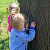 They learned about tree bark.