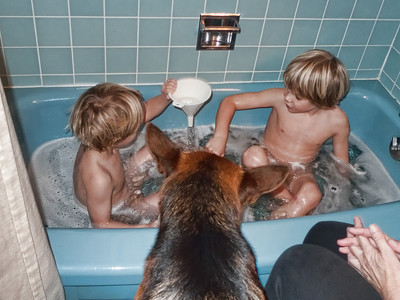 Time for a bath and fun with kitchen toys. The boys can't go anywhere with out Monty in tow.