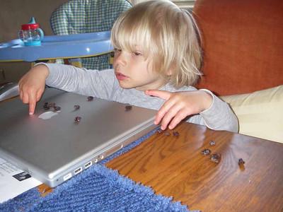 Laptops make good snack tables.