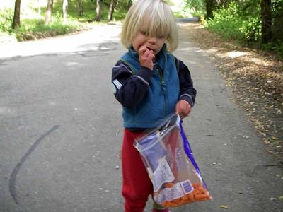 Snacks carrots are yummy.
